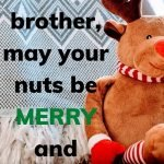 merry and bright brother funny note