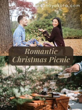 Romantic Christmas Picnic for holiday date ideas
