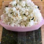 rice triangle with seaweed