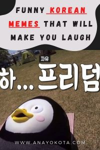 blog korean memes make you laugh
