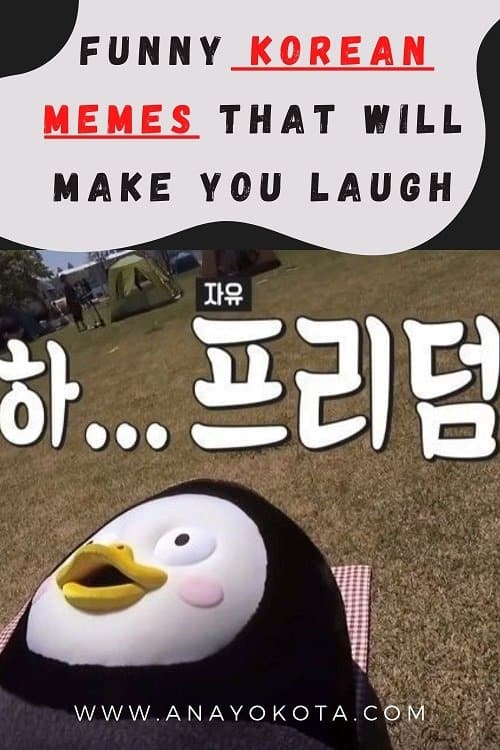 FUNNY KOREAN MEMES THAT WILL MAKE YOU LAUGH